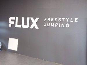 level-2-flux-7
